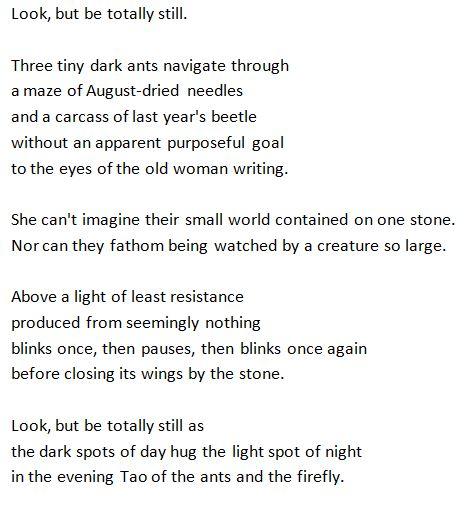 Stone Wall poem
