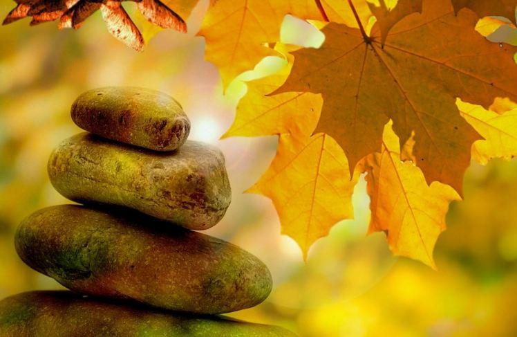 yellow-leaf-meditation