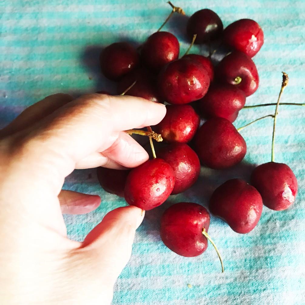 cherry selection.JPG