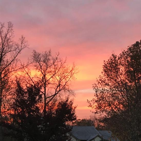 sunrise fleeting