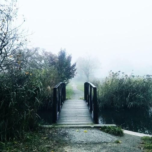 path with bridge