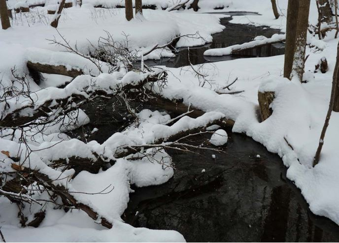 snowy creek at OEC