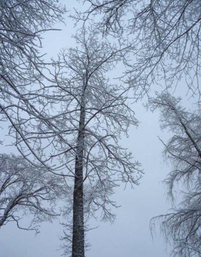 freezing drizzle blue