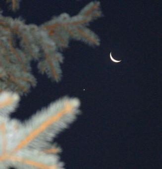 cresent moon and venus