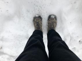 Janice boots